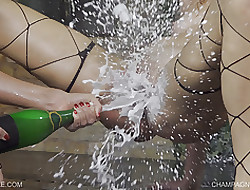 Champers Fountain-head - Queensnake.com - Queensect.com